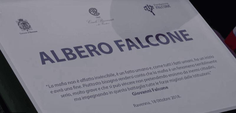 Albero Falcone Ravenna